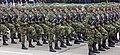 Ešalon izviđača 2 brigade - Odbrana slobode 2019 Niš 2.jpg