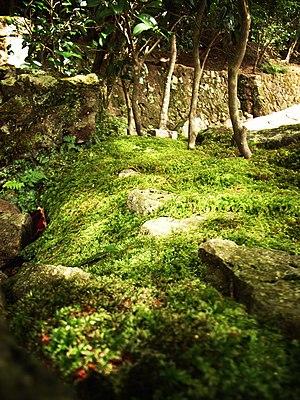 Eigen-ji - Image: Eigen ji (Rinzai temple) landscape