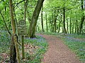 Entrance to Lower Deans Wood - geograph.org.uk - 7721.jpg