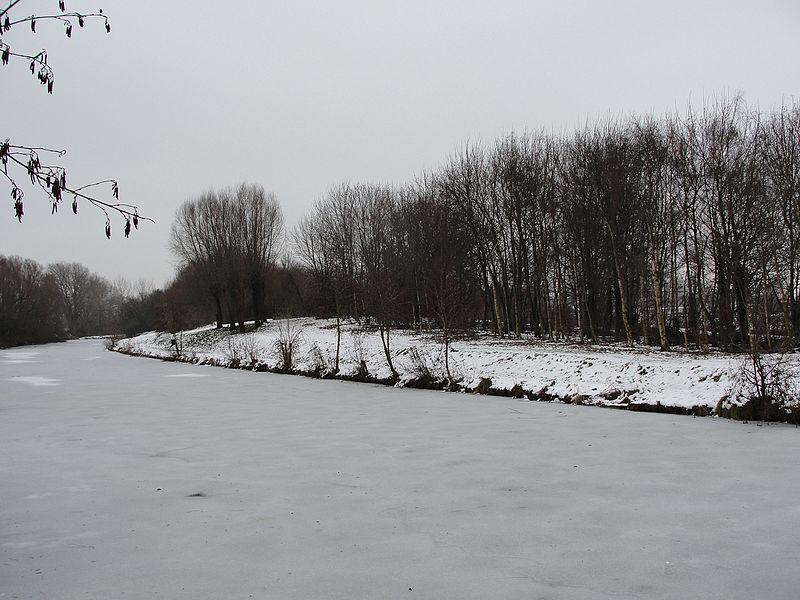 L'étang de la Justice à Quesnoy (Nord), bras mort de la Deûle, pris par les glaces.