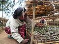 Ethiopia nursery .jpg
