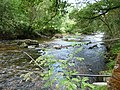 Exmoor , The River Barle - geograph.org.uk - 1496717.jpg