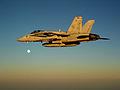 F-A-18C Hornet Aboard USS Ronald Reagan DVIDS123118.jpg