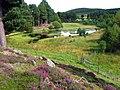 Fairy Loch Glen Tanar - geograph.org.uk - 600638.jpg