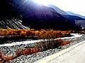 Fall in Hunza-basraa-18.jpg