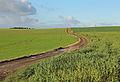 Falmignoul Countryside R08.jpg