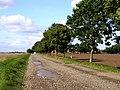 Farm Track - geograph.org.uk - 54000.jpg