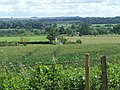 Farmland between Norton St.Philip and Woolverton - geograph.org.uk - 468468.jpg