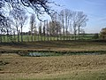 Farmland near Luddenham Court - geograph.org.uk - 613665.jpg