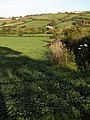 Field by Orestone Lane - geograph.org.uk - 1016059.jpg