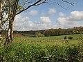 Fields near Blackingstone Farm - geograph.org.uk - 1290824.jpg