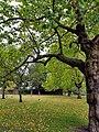 Finsbury Park 20171002 155448 (49369417088).jpg