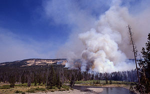 James Hansen - The incomplete combustion of biomass during the Yellowstone fires of 1988 near the Snake River introduced a large quantity of black carbon particles into the atmosphere.