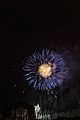 Fireworks - July 4, 2010 (4773782970).jpg