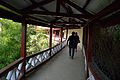 First Floor Corridor - HPTDC Lift - Cart Road-Mall Road - Shimla 2014-05-08 2059.JPG