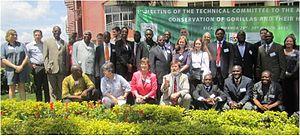 Agreement on the Conservation of Gorillas and Their Habitats - First Meeting of Technical Committee of the Gorilla Agreement, Kigali, Rwanda, 29–30 March 2011