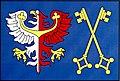 Flag of Jesenice Rakovník District.jpeg