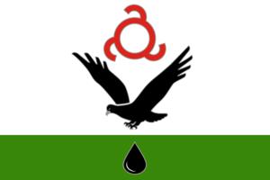 Malgobek - Image: Flag of Malgobek (Ingushetia)