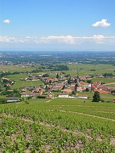 Fleurie Rhone France 28 May 2012.jpg