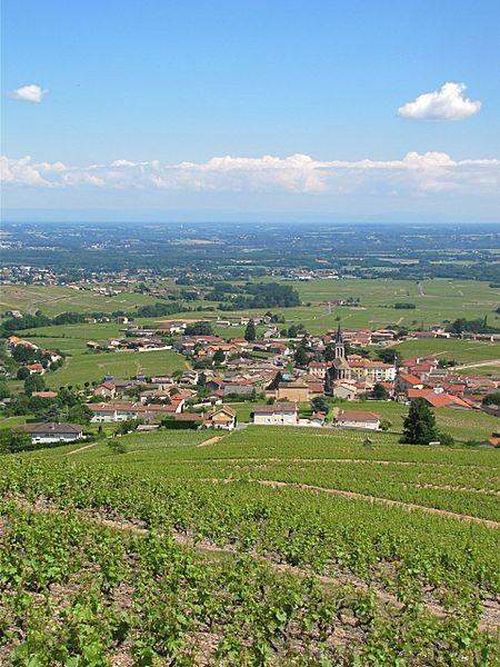 Vue de la ville de Fleurie, Rhône, France, le 28 mai 2012 depuis la Madonne.