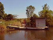 FloatingSauna
