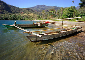Flores - Some fishing boats on Flores