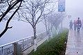 Fog in Tây Bắc.jpg