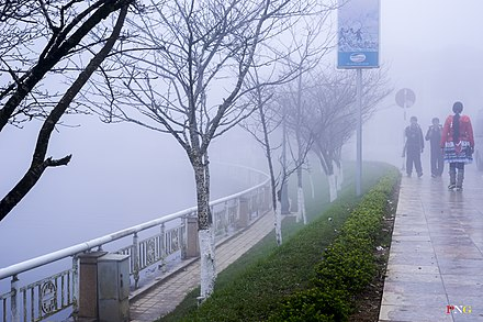 Natural fog in northwest Vietnam (Tay Bac). Fog in Tay Bac.jpg