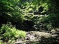 Footbridge over Halgut Burn (3) - geograph.org.uk - 843590.jpg
