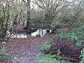 Footbridge over a River Adur tributary - geograph.org.uk - 1588556.jpg