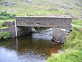 Footbridge over stream by Lough Fee - geograph.org.uk - 200007.jpg