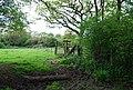 Footpath - Bridleway junction - geograph.org.uk - 1294862.jpg
