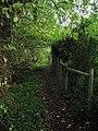 Footpath 1896, Marlpost Wood - geograph.org.uk - 245400.jpg