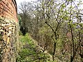Footpath off Westgate, Clifton - geograph.org.uk - 379545.jpg