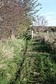 Footpath running alongside hedgerow - geograph.org.uk - 1562253.jpg
