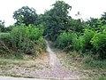 Footpath to Burg along the Niegripper Altkanal - geo.hlipp.de - 5200.jpg