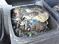 Foreign objects separated from residential biowaste.jpg