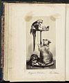 Fotoreproductie van een prent naar een schilderij van Edwin Henry Landseer.jpeg
