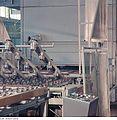 Fotothek df n-30 0000186 Facharbeiter für Glastechnik.jpg