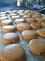 French Macaron.jpg