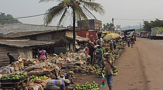 Penja Commune and town in Cameroon