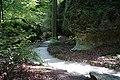 Fußweg Felsengarten Sanspareil 04082019 005.jpg