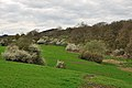 GR57 spring view in Comblain la Tour from the GR 57.jpg