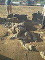 Gambar Batu Malin Kundang Pantai Air Manis.jpg