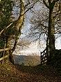 Gateway, Hisley - geograph.org.uk - 1086180.jpg