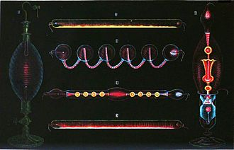 Geissler tube - Drawing of Geissler tubes illuminated by their own light, from 1869 French physics book, showing some of the many decorative shapes and colors.