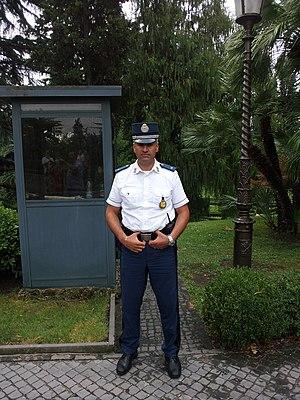 Corps of Gendarmerie of Vatican City - Vatican gendarme standing guard.