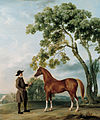 George Stubbs, 'Lord Grosvenor's Arabian Stallion with a Groom', c. 1765.jpg
