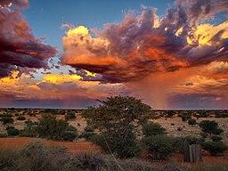 Gewitter in der Kalahari