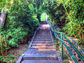 Gfp-beijing-stairs-to-the-top.jpg